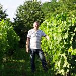 kalazic_vinograd